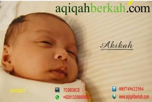 aqiqah1