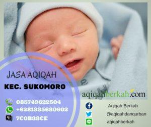 Jasa Aqiqah di Sukomoro (085749622504)