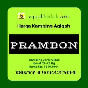 Daftar Harga Kambing Aqiqah di Prambon