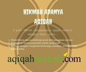 Aqiqah Berkah (16)
