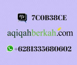 Aqiqah Berkah (22)
