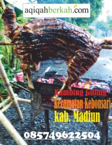 kambing guling kecamatan kebonsari madiun