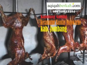 kambing guling kecamatan mojowarno jombang
