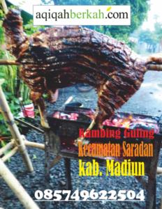 Kambing Guling Kecamatan Saradan Madiun