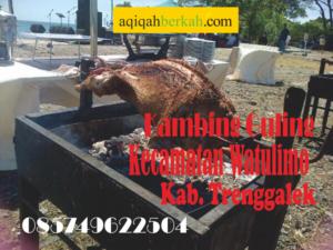 Kambing Guling Kecamatan Watulimo Trenggalek