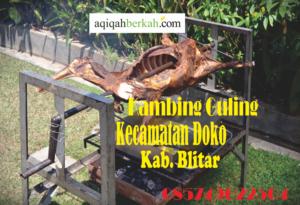 Kambing Guling Kecamatan Doko Blitar