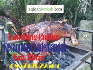 Kambing Guling Kecamatan Kademangan Blitar