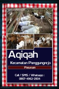 Aqiqah Kecamatan Panggungrejo Pasuruan